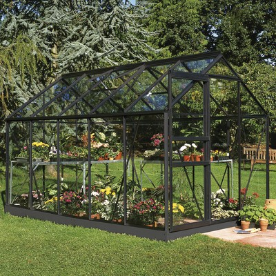 Växthus Popular 6,2 m² - Svart med härdat glas