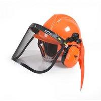 Skyddshjälm med ansiktskydd och hörselskydd
